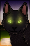Hollyleaf (with Speedpaint) by AcidNeku