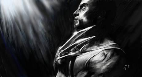Wolverine by Jaimus