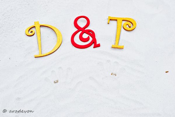 T and D Beach Wedding 08 by aradevon