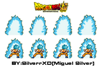 Aura Goku SSGSS