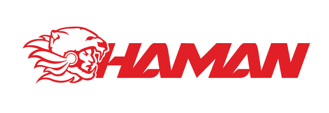 Chaman - Logo by 13arrio