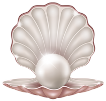 Beautiful Clam with Pearl PNG Clipart Image