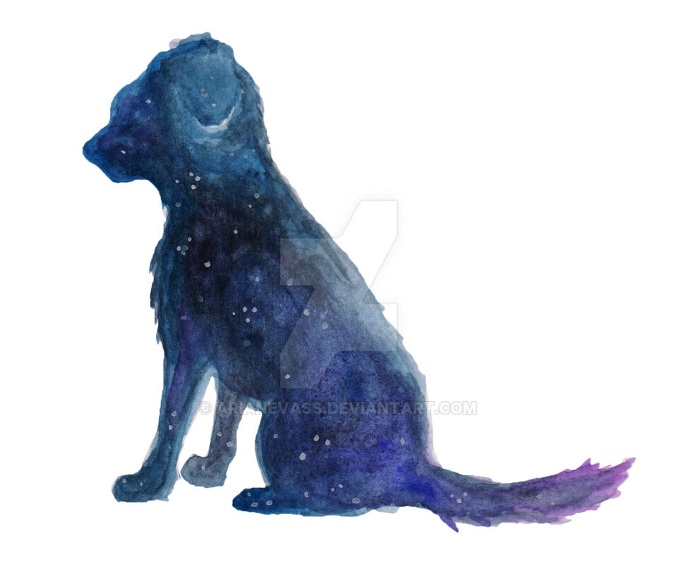 Canine Galaxy Silhouette by ArianeVass
