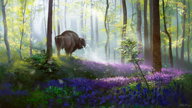 Daydreaming bison