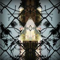 Wires by BnBattaglia