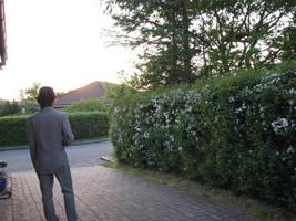 seeing the sunset by munikiki
