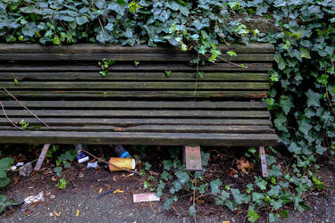 A bench in Seattle by jesseboy000