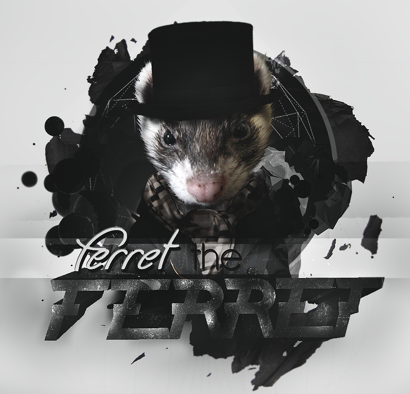 Ferret The Ferret by DanNask