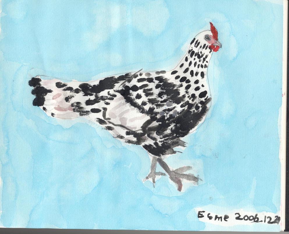 Chicken by ghostgray