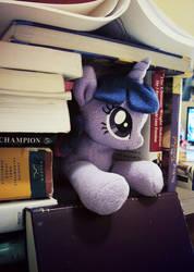 Bookfort by ButtercupBabyPPG
