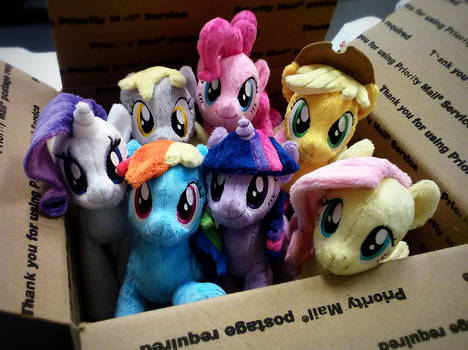 Ponies for good home
