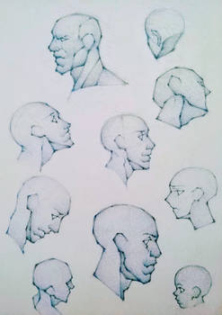 Head Sketches