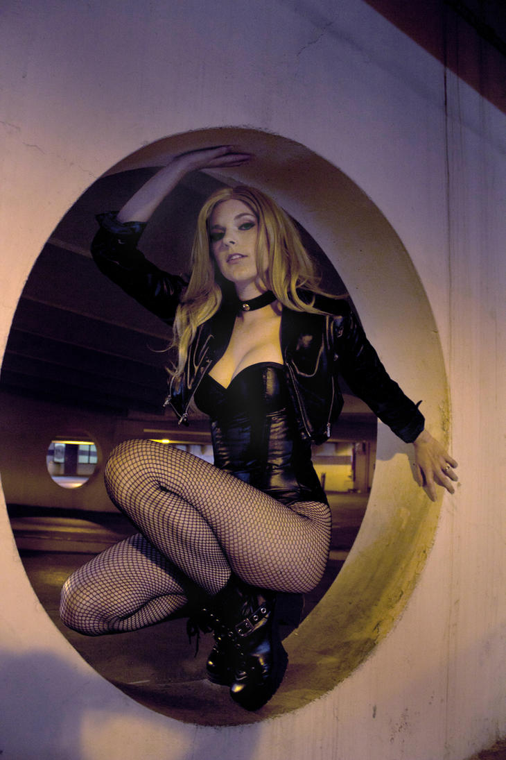 Perching - Black Canary by Lossien