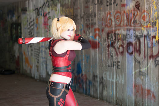 Up to the Plate : Arkham City : Harley Quinn