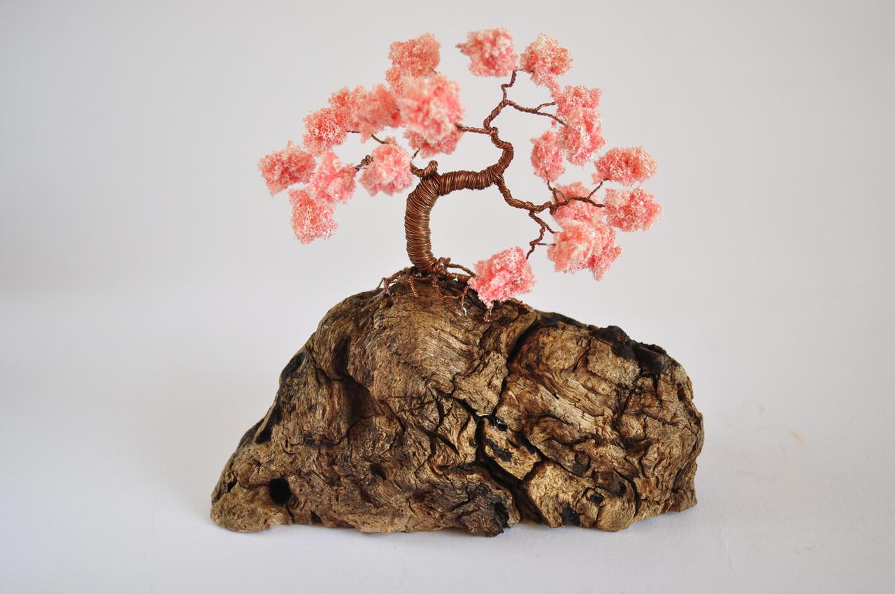 Sakura Bonsai Tree by NoriAnum
