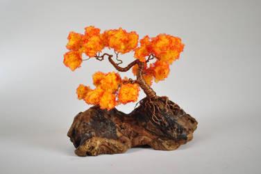 Late autumn bonsai
