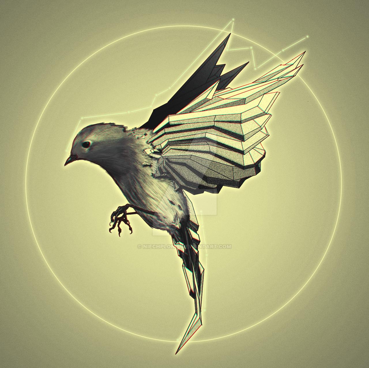 Bird by NiechPlonie