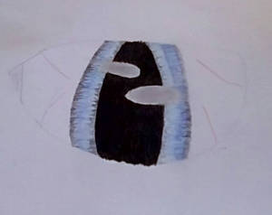 Eye practice (realistic)(traditional)