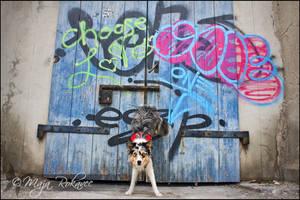 Big blue door... by Majchy