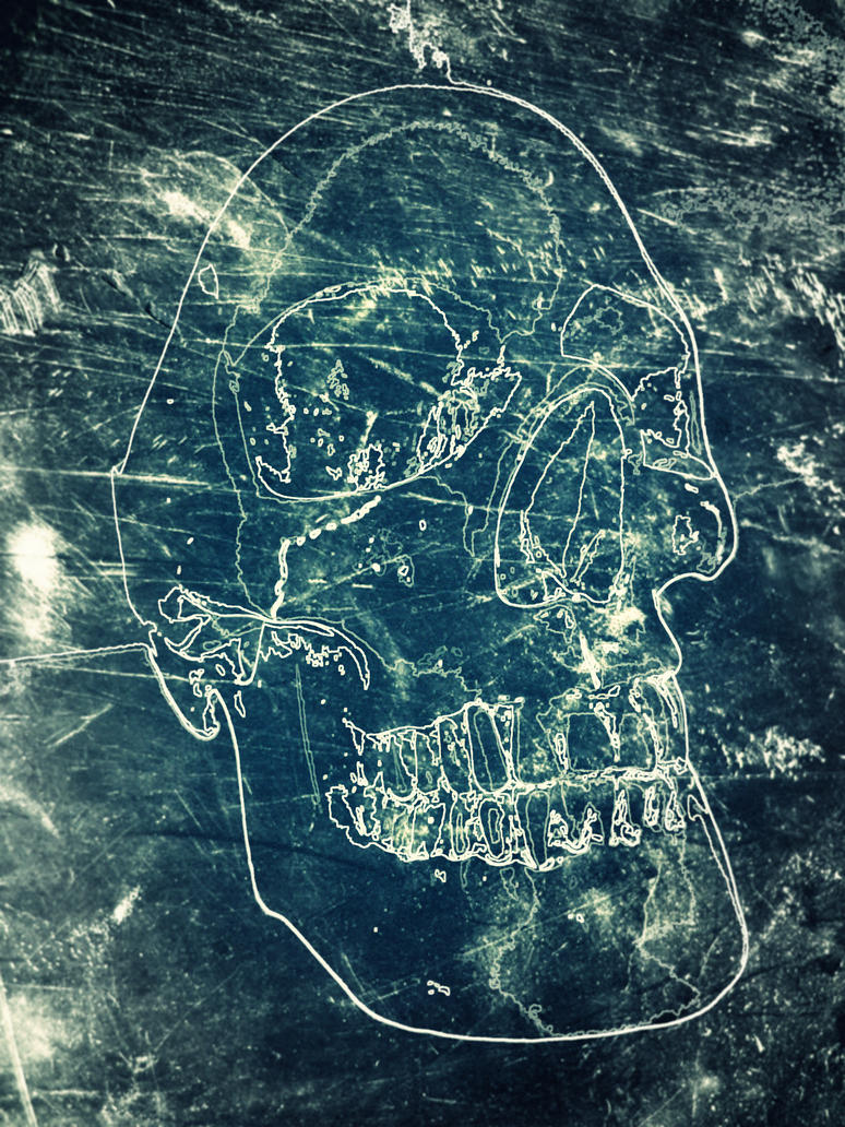 Skull by hermanubis93