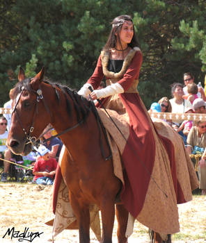 Medieval dance on horses4