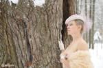 Winter Elegance II by madlynx