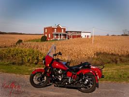 Autumn ride by madlynx