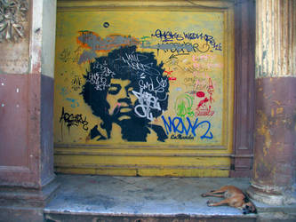 Havana graffiti (The nap of the little dog!) by madlynx
