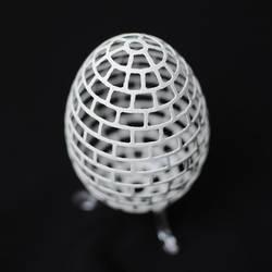 carvedg goose eggshell (14092013)