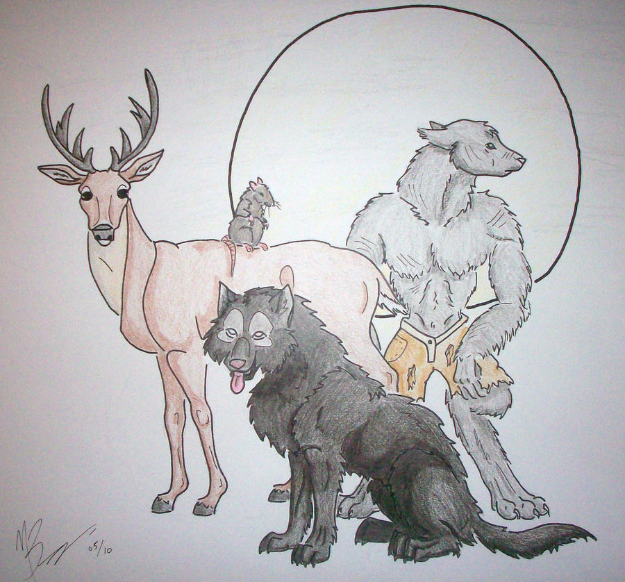 Moony.Wormtail.Padfoot.Prongs by goldentiger01 on deviantART