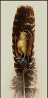 Painted Feather - Abade