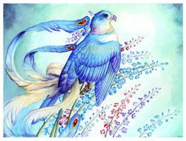 Birdflowers: Larkspur - July by windfalcon