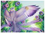 Birdflowers: Aster - September