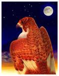 Fire Falcon