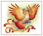 Firelily Birdflower - For Jess