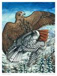 Arctic Flight