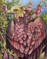 Foxglove Nectarbird by windfalcon