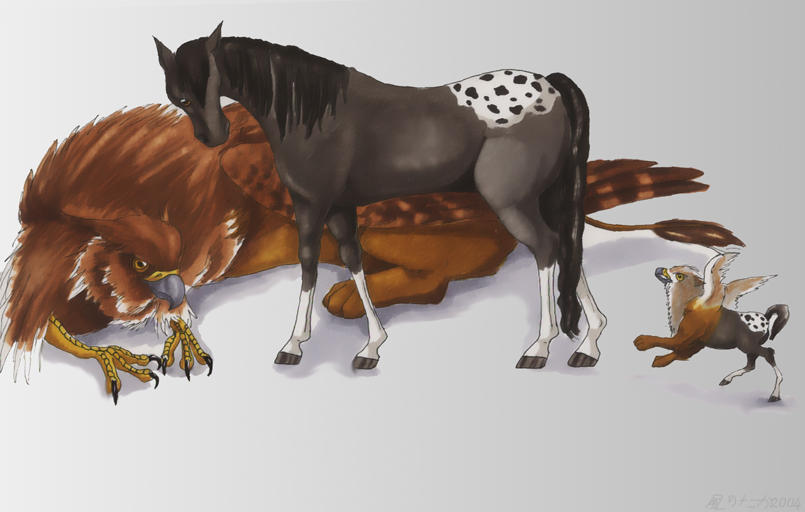 free horse wallpaper for computer