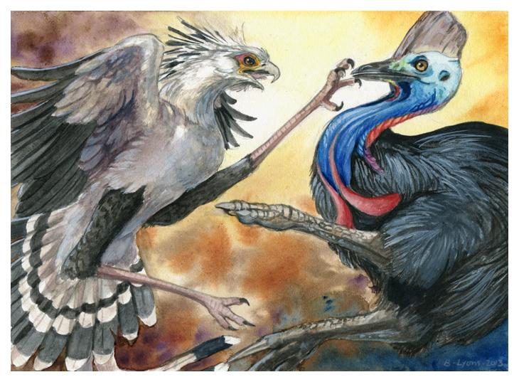 Secretary Bird vs. Cassowary by windfalcon