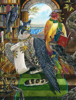 Avian Librarians - Art for Winged Fantasy