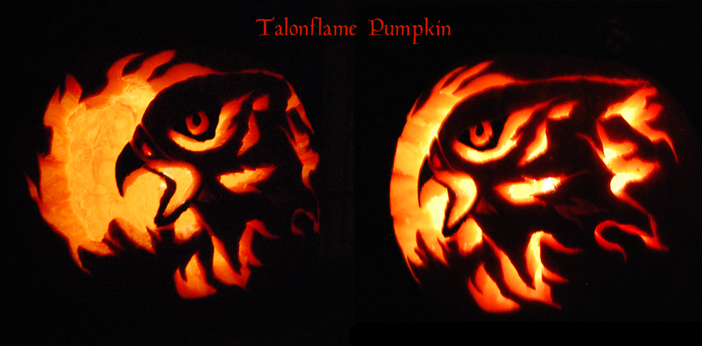 Talonflame Pumpkin by windfalcon