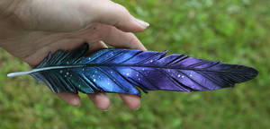 Raven Leather Feather