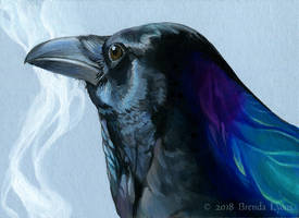 Corvus Veil by windfalcon