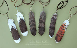 Six Leather Raptor Feathers