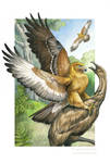 Haast's Eagle - Sixth Extinction Deck