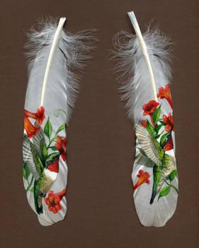 Hummingbird Painted Feathers