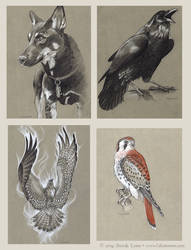 Graphite Patreon Sketches by windfalcon
