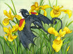 Red-Winged Blackbird Dragon