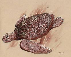 Inktober Day 4: Turtle Freeze