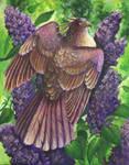 Lilac Nectarbird